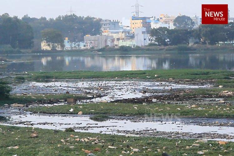 Watch In Bengalurus Peenya industrial pollution is destroying public health