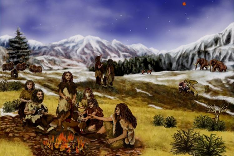 The daily life of a Neanderthal revealed from the gunk in their teeth