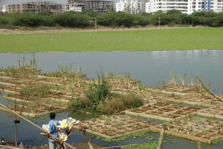 With 3500 saplings floating islands help rejuvenate Hyd Neknampur Lake
