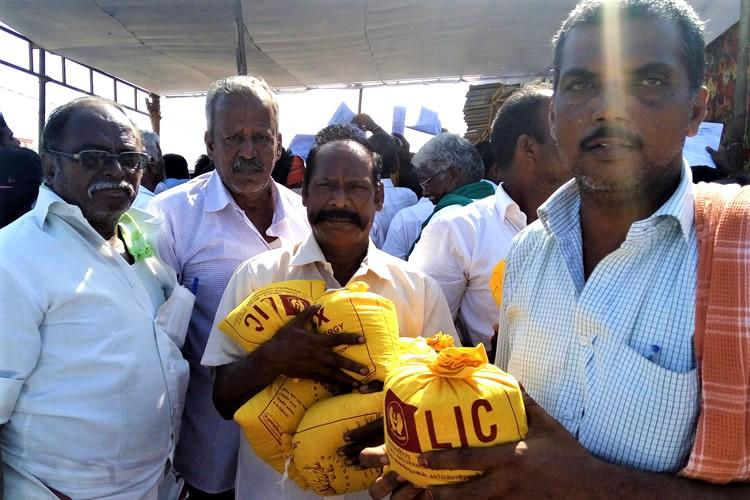Nel Thiruvizha TNs celebration of indigenous grains and the man who championed them