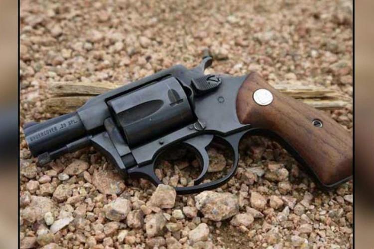 In 2 yrs Ktaka residents bought highest no of Indias indigenous revolver Nidar