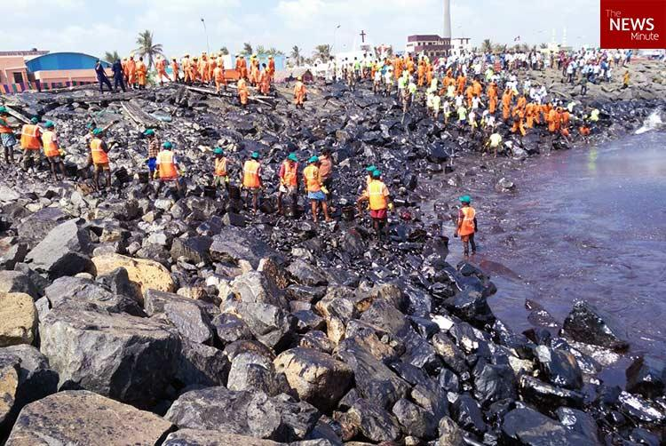 IIT Madras report warned of long-term impact of Chennai oil spill but officials ignored it