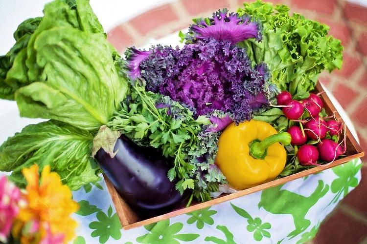 Organic food startups Massive opportunity but high costs remain a challenge
