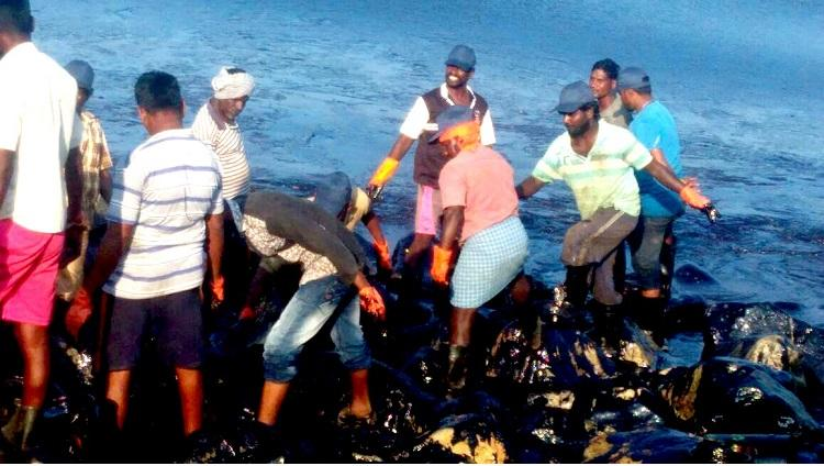 Authorities flout rules yet again those cleaning Chennai oil spill exposed to toxic chemicals