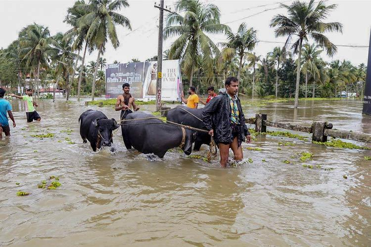 Kerala insurance claims on account of floods may total Rs 4500 crore