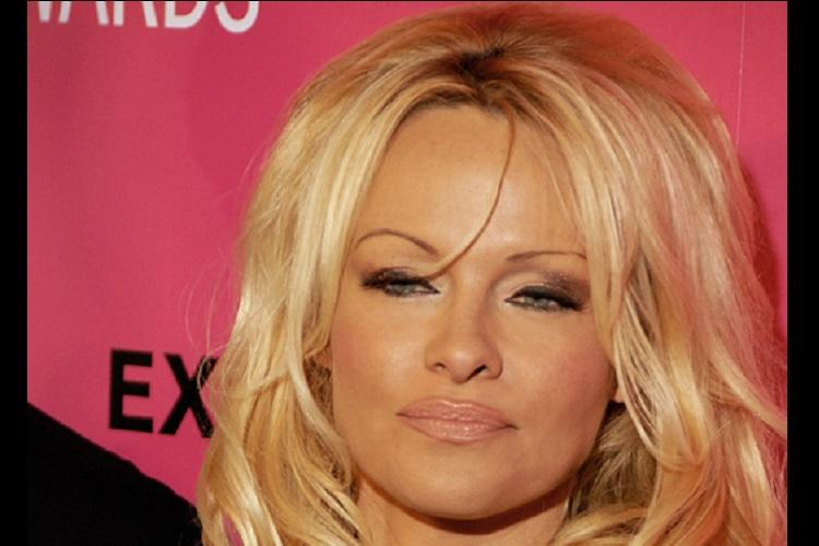 Pamela Anderson brands porn as public hazard