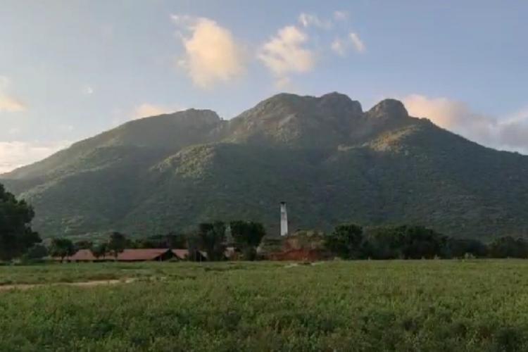 A representative image of a land