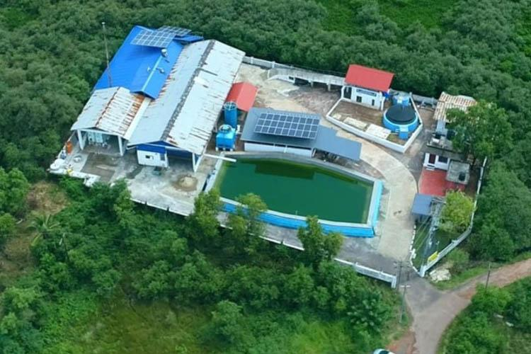 100 tax collection biogas plant and more 2 Kerala panchayats named best local bodies
