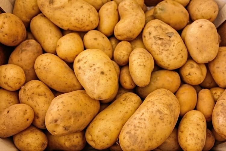 Can you survive eating nothing but potatoes