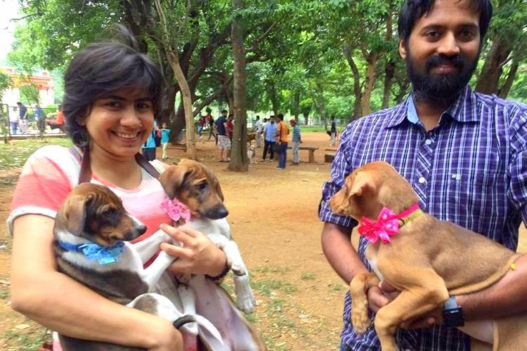 This Sunday Bengalureans can get their dogs registered with the BBMP This is how