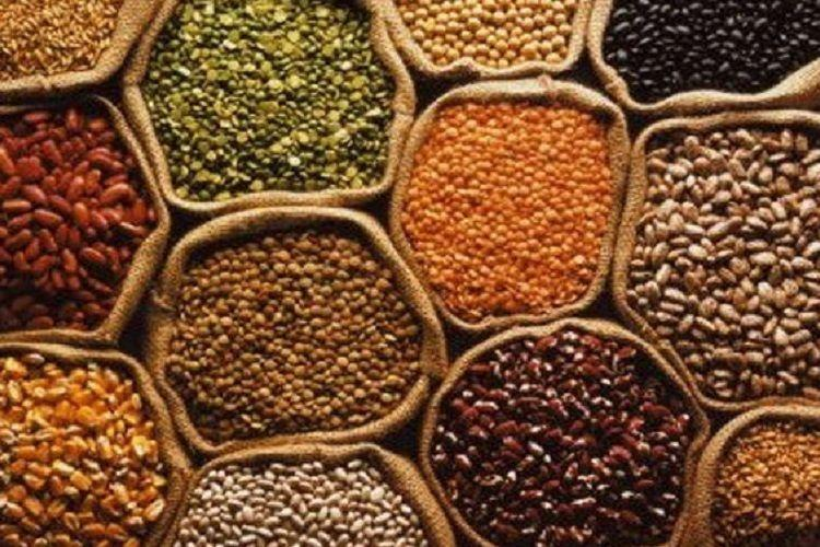 Reading the pulse of pulses India should use its dominance to protect consumers and producers