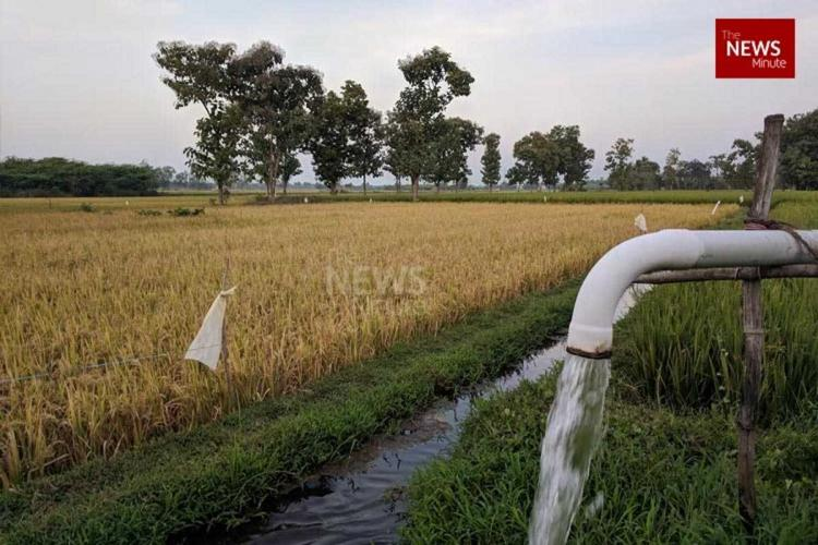 Withdrawing subsidy to agricultural use of power in TN impractical Experts