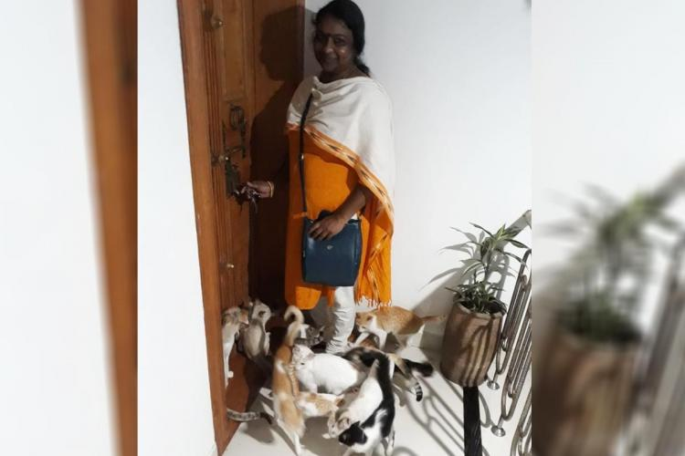 Pushpa surrounded by her cats