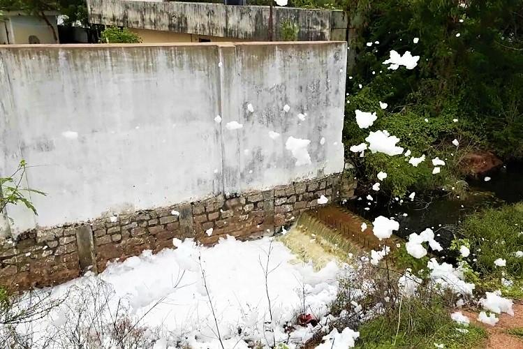 Raids reveal how large scale dumping of animal waste may have triggered frothing of Hyd lake