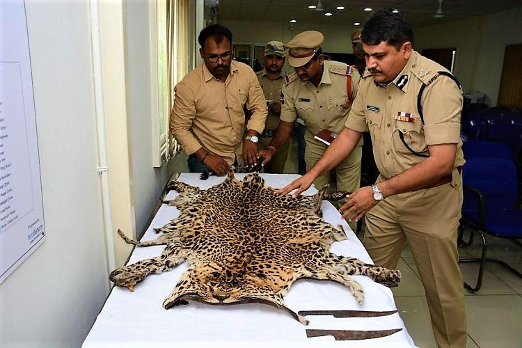 Rachakonda police arrest 17 in Telangana for killing leopard trying to sell its skin