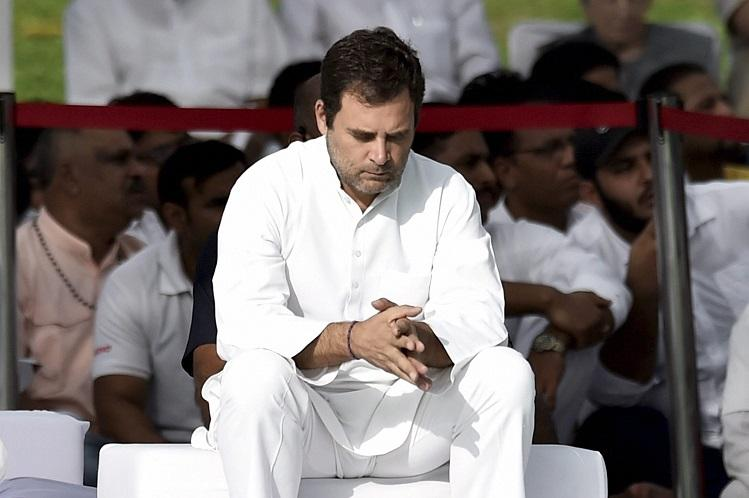 Rahul Gandhi insists he will quit says Congress has to find new chief Reports