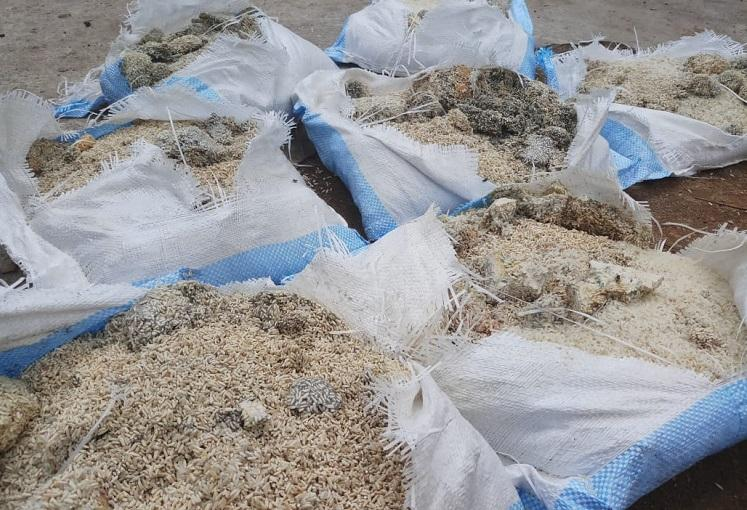 Migrant workers given spoilt rice in Dakshina Kannada District administration to probe
