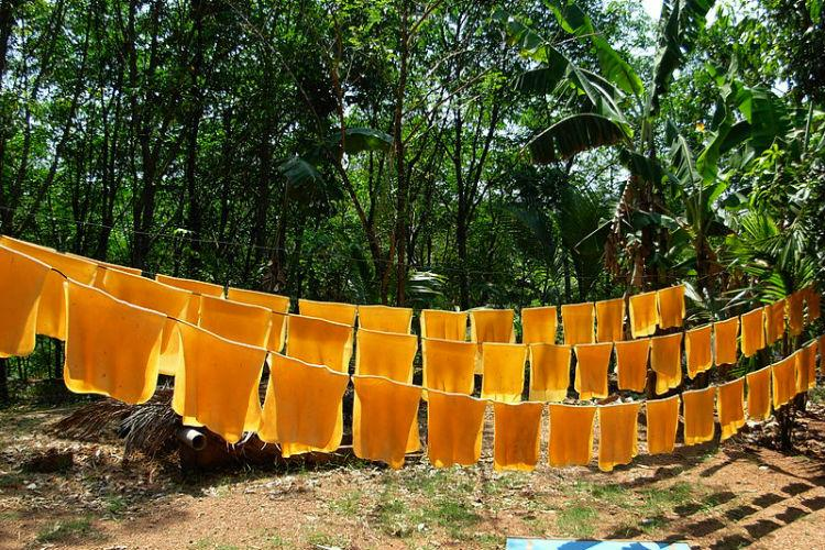 Kerala rubber planters want national policy to help industry Commerce Secretary dashes hopes
