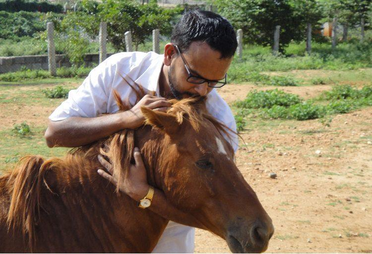 Meet the Bengaluru man whos dedicated years to saving the citys abandoned horses and ponies