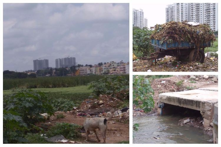 Encroachment and BBMP apathy has turned the once beautiful Sarakki Lake into a cesspool