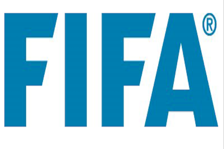 Most countries back expanding 2022 World Cup FIFA