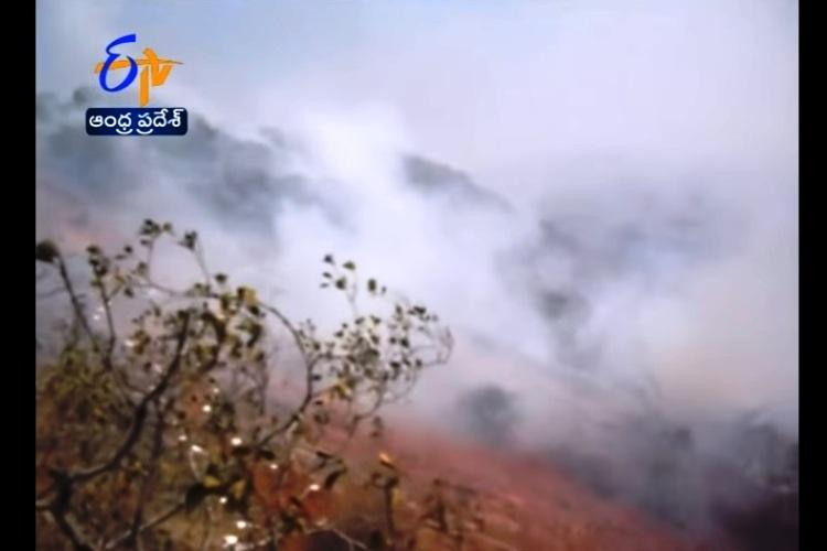 1000 hectares of trees burnt after fire breaks out at Andhras Seshachalam forest