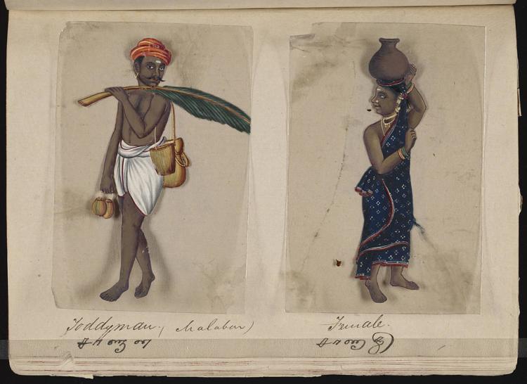 Genetic studies confirm historical evidence on caste enforcement