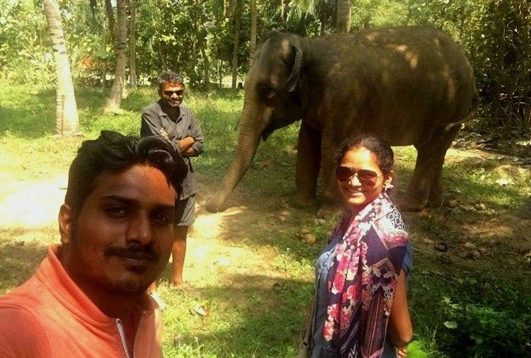 Jumbo shift Meet the Bengaluru couple who dropped lucrative jobs to care for elephants