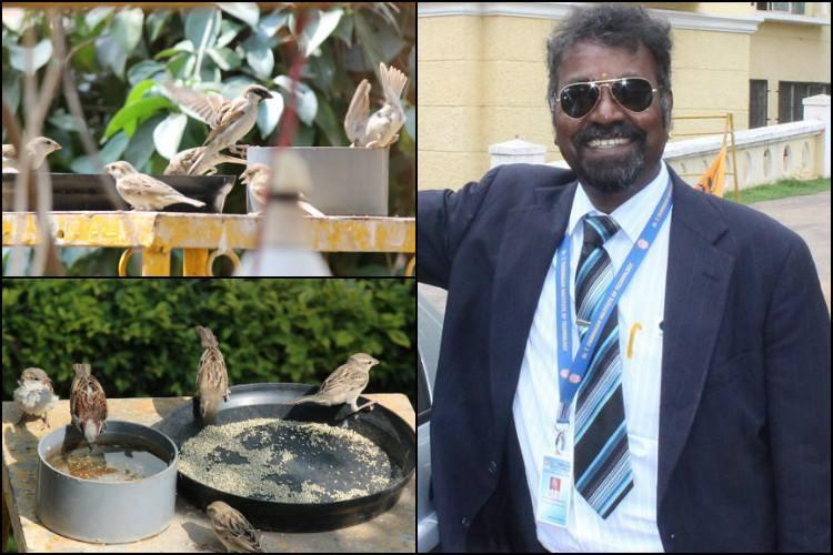 Its an unfriendly world for sparrows but this Ktaka man has welcomed hundreds to his home