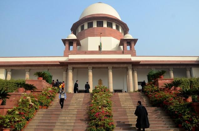 SC forms panel to examine complaints of dog bites in Kerala