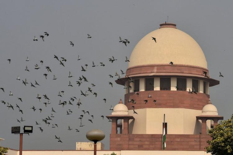 A file image of birds flying over Supreme Court
