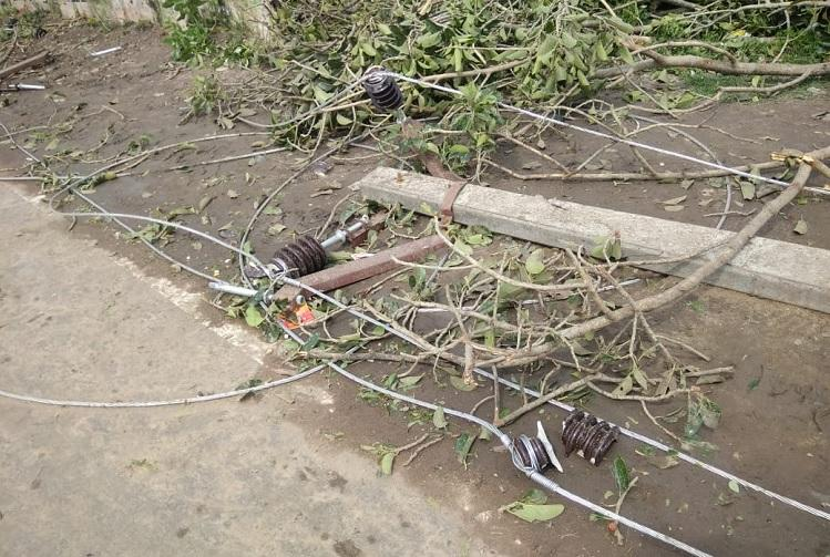 Over 1 lakh poles may be damaged TN Electricity Board hit hard by Cyclone Gaja