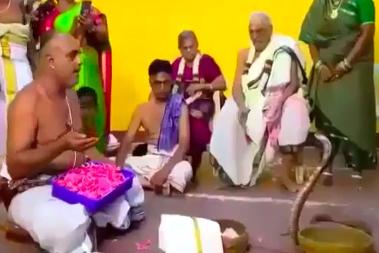 Priest in TN performs puja in front of a cobra lands himself in jail