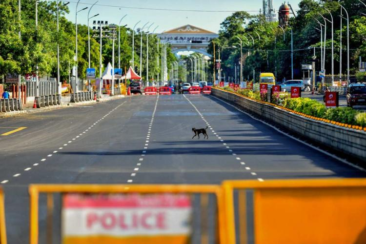 A dog crosses an empty strech of road in Chennai as a barricade is placed during the lockdown