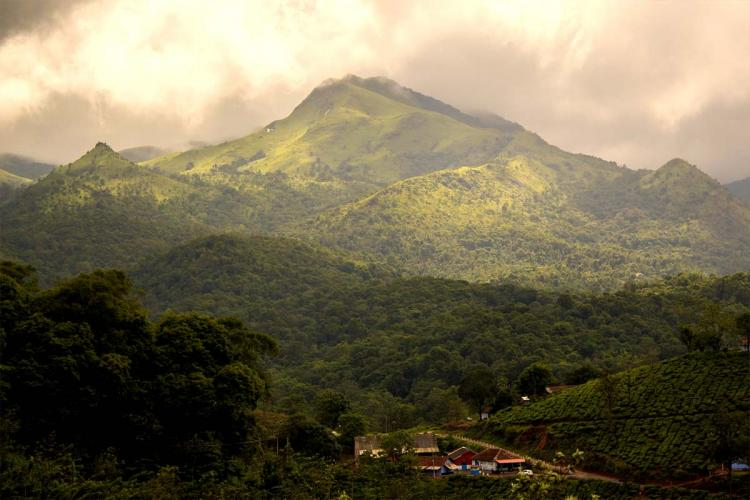 Hill ranges of Wayanad filled with tea estates