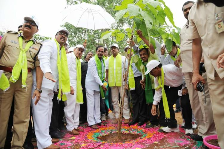 Can Telangana achieve goal of 33 percent green cover by 2019 Unlikely say stats