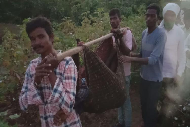 Villagers carrying the body of Vignesh who was killed by the tiger