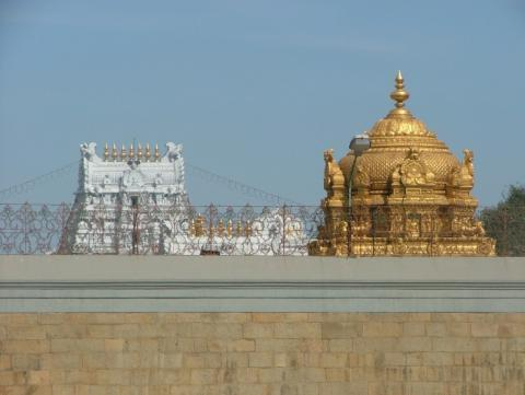 TTD cuts water supply by half as Tirumala faces severe water crisis