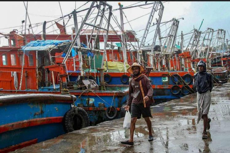 Trawling boats stationed in a fishing harbour