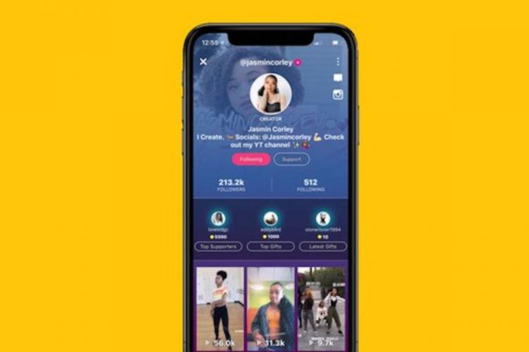 China export rules aim to slow down TikTok sale