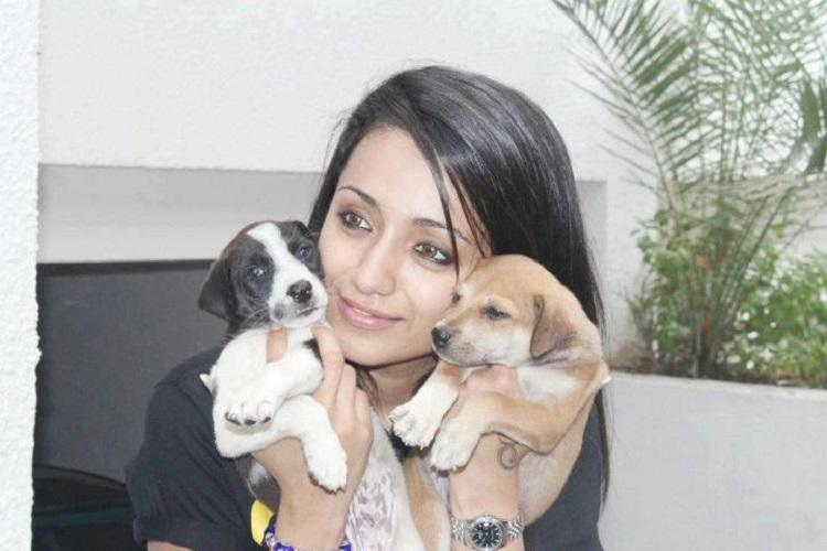 Jallikattu issue turns ugly misogynistic attack on actor Trisha tells you just how much