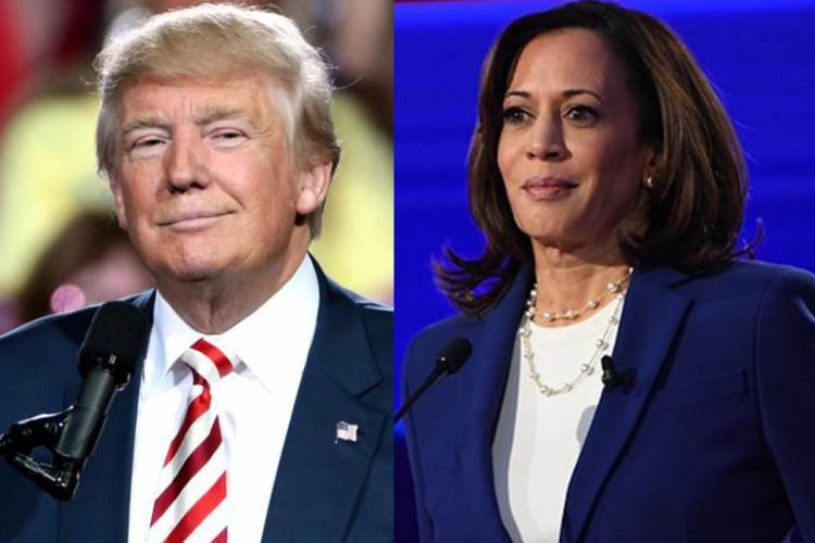 Us Presidential Polls Donald Trump Calls Kamala Harris A Risky Very Unusual Pick The News Minute