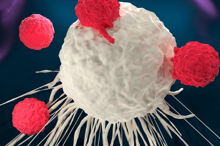 Scientists develop nano Trojan horse to strangle tumours