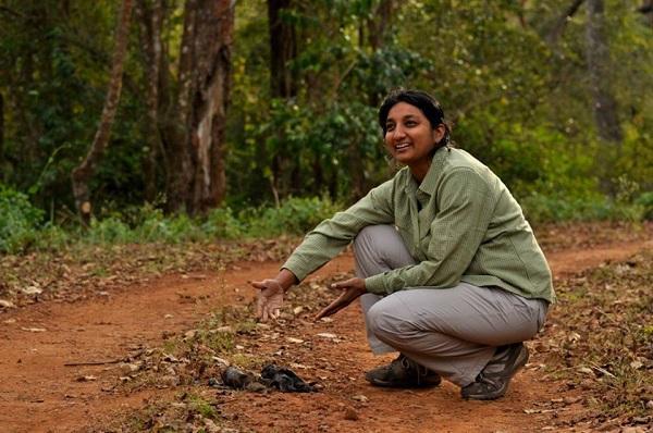 Bengaluru based ecologist bags Parker-Gentry award for work on tiger conservation