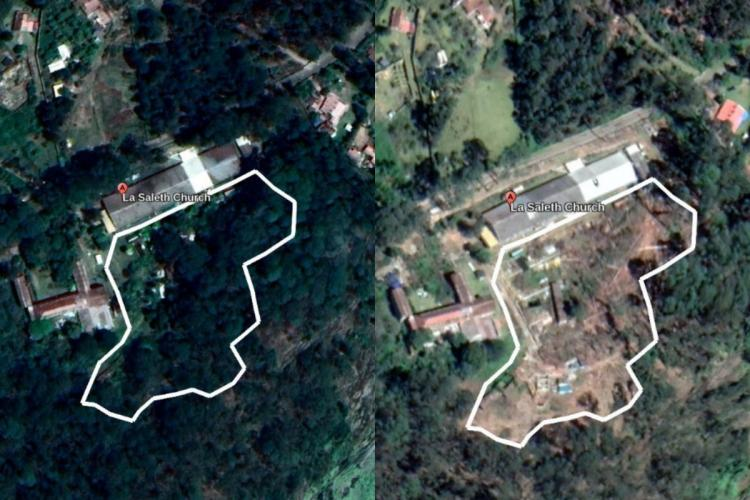 Collage of Google Earth screenshots of deforestation