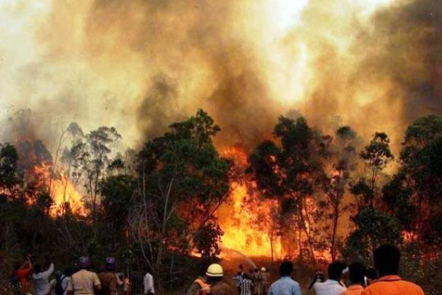 School students in Himachal evacuated as raging forest fire spreads