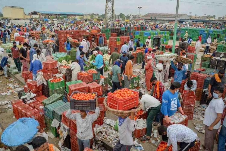 Vegetable wholesale market in Jalandhar in April