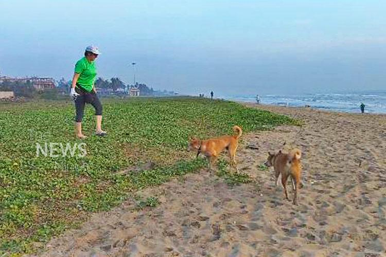 Beach warrior Meet the Belgian woman on a mission to clean Chennais coastline