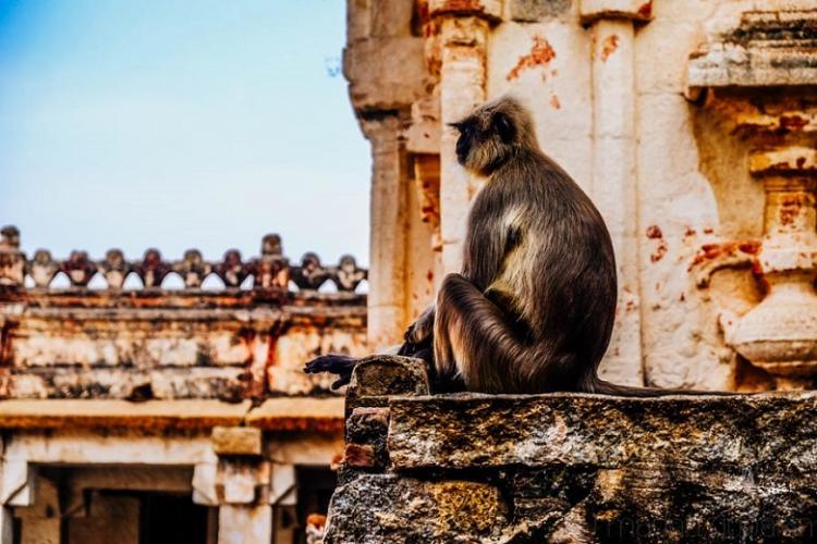 Photo essay Kishkindha the kingdom of the Vanaras