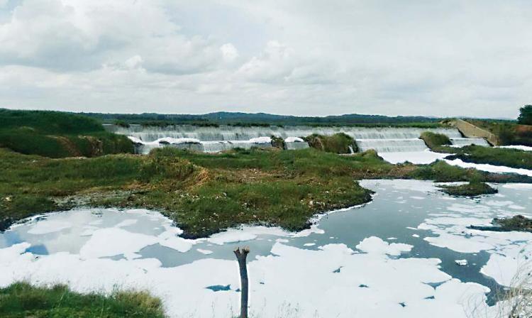 How Bengalurus Peenya Industrial Area has choked and killed its surrounding lakes